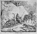 Die Gartenlaube (1863) b 325.jpg