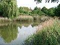 Dolní Chabry, Prostřední rybník (01).jpg