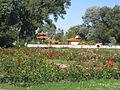 Donaupark Rosengarten.JPG