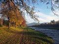 Dreisam im Herbst.jpg