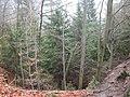 Dscn3512 - panoramio.jpg