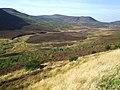 Dunrobin Glen - geograph.org.uk - 62132.jpg