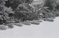 ETH-BIB-Ausstellung von Kanonen in einem Garten in Fès-Nordafrikaflug 1932-LBS MH02-13-0352.tif