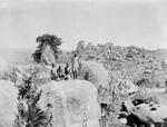 ETH-BIB-Gruppe Kinder auf einem Felsen in der Serengeti-Kilimanjaroflug 1929-30-LBS MH02-07-0070.tif