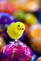 Easters Coming (5609782002).jpg