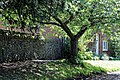 Eastry, Kent England - Church Road path and wall.jpg