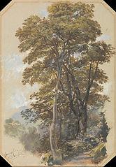 Corpo di Cava, 28 June 1838