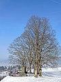 Einsiedeln - St. Benedikt 2013-01-26 13-54-51 (P7700).JPG