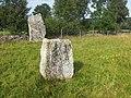 Ekornavallen (Raä-nr Hornborga 27-1-2) resta stenar 2587.jpg