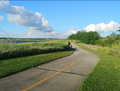 Elly whalon lake paved trail.png