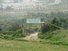 تاريخ فلسطين _الحياة البرية والغابات