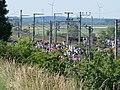 Ende Gelände Nord-Süd-Bahn blockade 23-06-2019 54.jpg