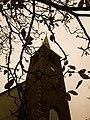 Engelse presbyteriaanse kerk, begijnhofkapel.jpg