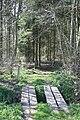 Entrance to Ellerton Woodww - geograph.org.uk - 391711.jpg