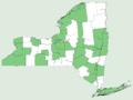 Epilobium hirsutum NY-dist-map.png
