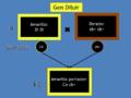 Esquema Gen Diluir1.png