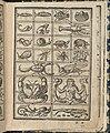 Essempio di recammi, page 11 (recto) MET DP364583.jpg