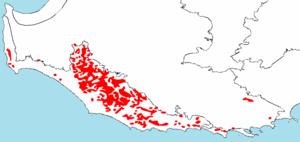 Eucalyptus diversicolor - Distribution of E. diversicolor
