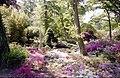 Exbury Gardens - geograph.org.uk - 779043.jpg