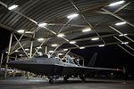 F-22 Raptors fly in support of CJTF-OIR 160711-F-KA253-113.jpg