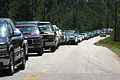 FEMA - 13835 - Photograph by Mark Wolfe taken on 07-12-2005 in Alabama.jpg