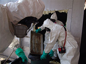 Environmental health - FEMA/EPA Hazardous Materials Team removing hazards left in the wake of Hurricane Katrina, 2005.