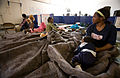 FEMA - 40529 - Residents at a temporary Red Cross shelter in Fargo in North Dakota.jpg