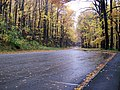 Fall drive through the Smokies - panoramio.jpg