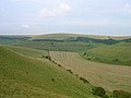 Falmer Bottom - geograph.org.uk - 51724.jpg
