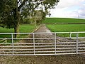 Farm Track at Blaiket Mains - geograph.org.uk - 266229.jpg