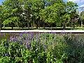 Farroupilha Park in Porto Alegre, Brazil .jpg