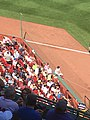 Fenway Safety Netting 2018.jpg