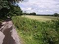 Field and lane at Barley Hill Farm - geograph.org.uk - 481174.jpg