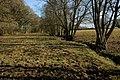 Field beside Allums Grove - geograph.org.uk - 1212143.jpg