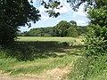 Field beside Sandy Lane - geograph.org.uk - 860052.jpg