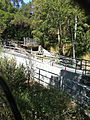 Fish Ladder Los Trancos Creek 2011.jpg