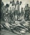 Fishermen in Aer Tembaga, Minahasa, Indonesia Tanah Airku, p45.jpg