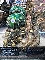 Fiskebryggen, Mathallen, Fishmarket, Bergen, Norway 2018-03-18. Cardiidae (vongole, hjerteskjell), Western king prawn (kongereker), etc. displayed for sale at Fjellskål sea food store.jpg