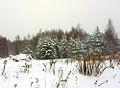 Flickr - Per Ola Wiberg ~ mostly away - wintertime.jpg