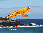 Flying tiger, II - Festival of the Winds 2012.jpg