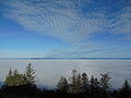 Fog in Willamette Valley from Spencer Butte.JPG