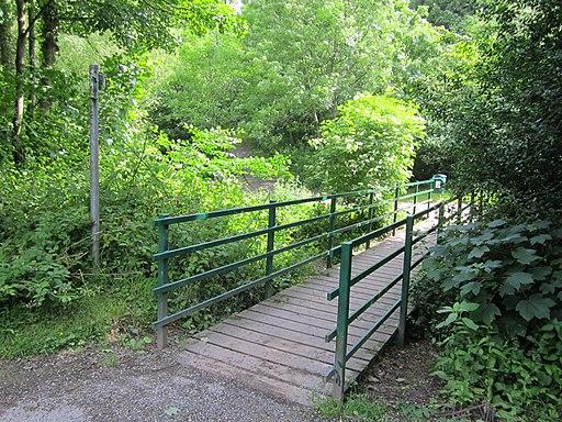 Footbridge over Rivacre Brook (1)