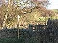 Footpath across The Haining - geograph.org.uk - 650945.jpg