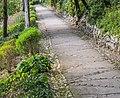 Footpath in Jardins de la Fontaine in Nimes 03.jpg