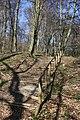 Frühlingsrundwanderung Schmücke bei Heldrungen - panoramio.jpg