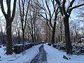 Friedhof Seestrasse 18.01.2016 11-18-24.jpg