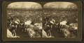 From Kansas plains (...), Union Stock Yards (stockyards), Chicago, U.S.A, from Robert N. Dennis collection of stereoscopic views.png