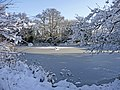 Frozen pond, South Lodge Crescent, Enfield - geograph.org.uk - 1150317.jpg