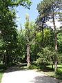 Futoski Park-Novi Sad2.jpg