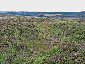 Fylingdales - Image: Fylingdales Moor